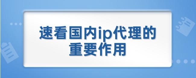 速看国内ip代理的重要作用.png