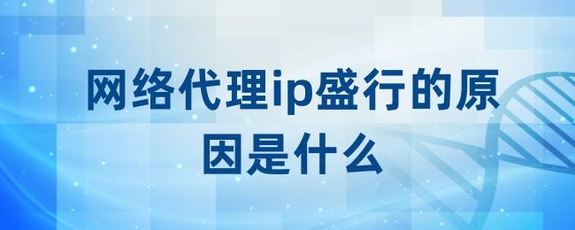 网络代理ip盛行的原因是什么.jpg
