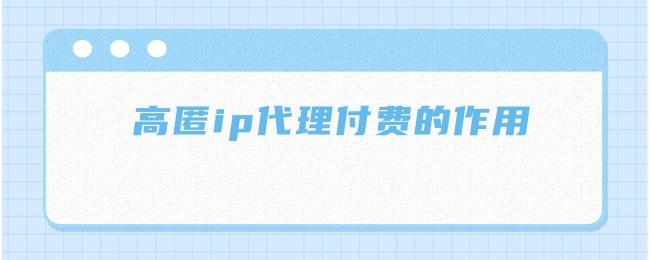 高匿ip代理付费的作用.jpg